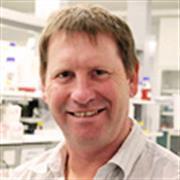 Photo of Prof Philip Hansbro